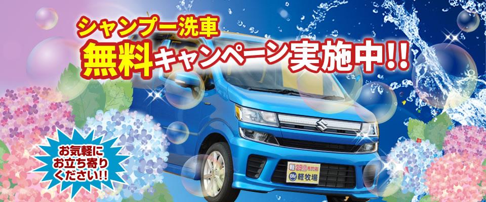 シャンプー洗車 無料キャンペーン実施中!!